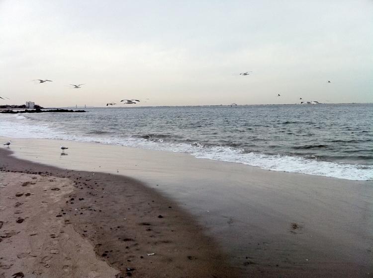brighton beach photo